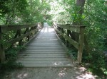 My favorite bridge! Its wobbliness is both disconcerting and kind of fun.