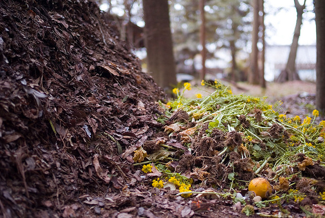 Compost pile. Photo by Joi Ito; Flickr