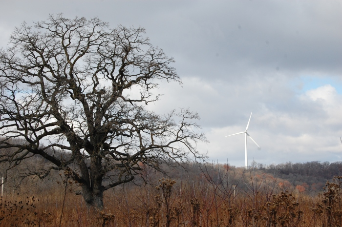 A wind turbine near the Luther College campus. Photo by Ellen Macdonald; Flickr