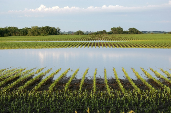 Flooded field in Polk County, Iowa Photo by cliff yates; flickr