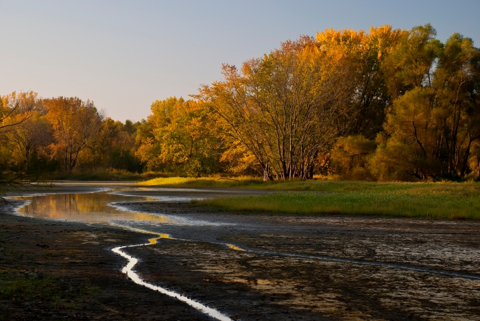 A stream near Lisbon, Iowa. (Rich Herrmann/Flickr)