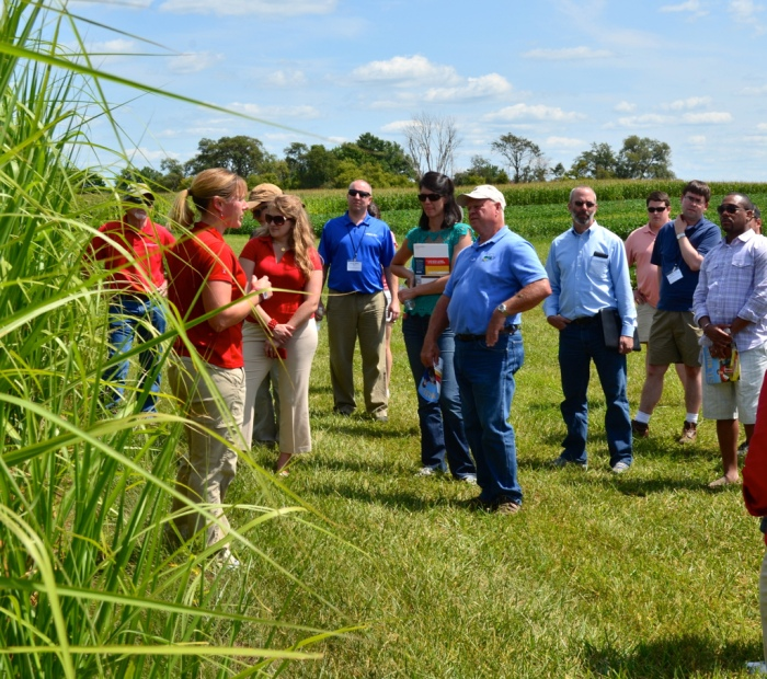 Iowa State agronomy researcher Emily Heaton (left, red shirt) introduces congressional staffers to biomass crop miscanthus. (CenUSA Bioenergy/Flickr)