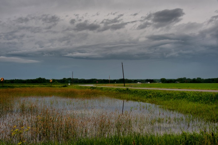 Standing water in an Iowa field during the summer of 2014 (Carl Wycoff/Flickr)