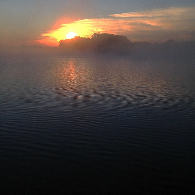 Morning fog rises off of Lake MacBride near Solon, IA. The lake reported a massive fish kill due in part to blue-green algae earlier this year. (KC McGinnis / for CGRER)