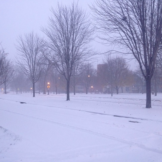 Snowfall in St. Paul, Minnesota on Monday, November 11, 2014. (Grace/Instagram)