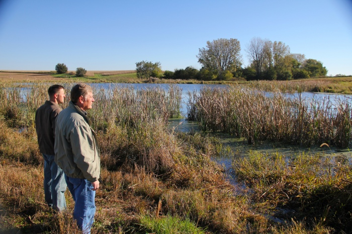 Wetlands (such as this one) have been used in Iowa as a way to reduce the amount of nutrient runoff that pollutes Iowa's waterways. (Green Fire Productions/Flickr)