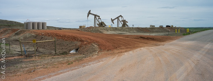 Pump jacks on the Bakken oil fields in North Dakota (A.G. McCullian/Fickr).