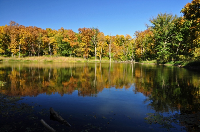 A shot of the autumn trees at Lake Ahqabi State Park in central Iowa. (TumblingRun/Flickr)