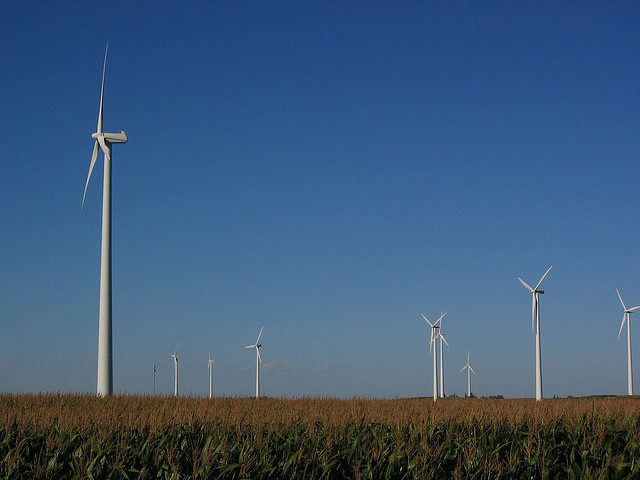 Wind turbines in northern Iowa. (Brooke Raymond/Flickr)