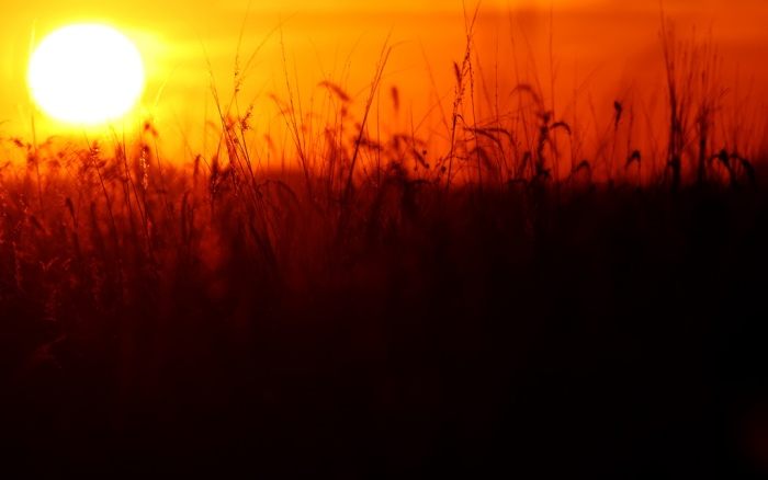 The sun sets over a field in Mount Vernon. (Rich Herrmann/Flickr)