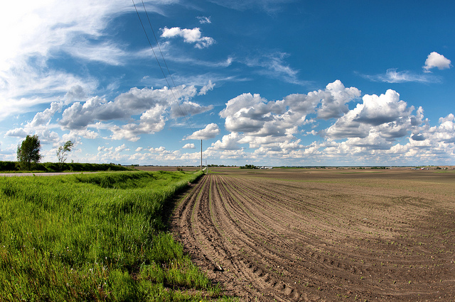Farmland in Story County, Iowa. (Karl Wycoff/Flickr)