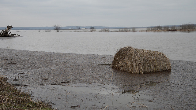 A hay bale get swept away by the rising Mississippi River near Commerce, MO on Dec. 31, 2015 (Missouri National Guard/Flickr)