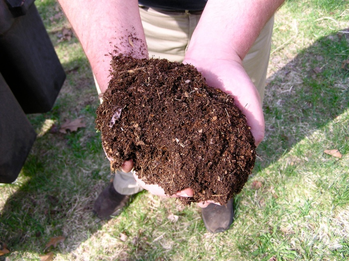 An example of healthy compost (normanack / Creative Commons)