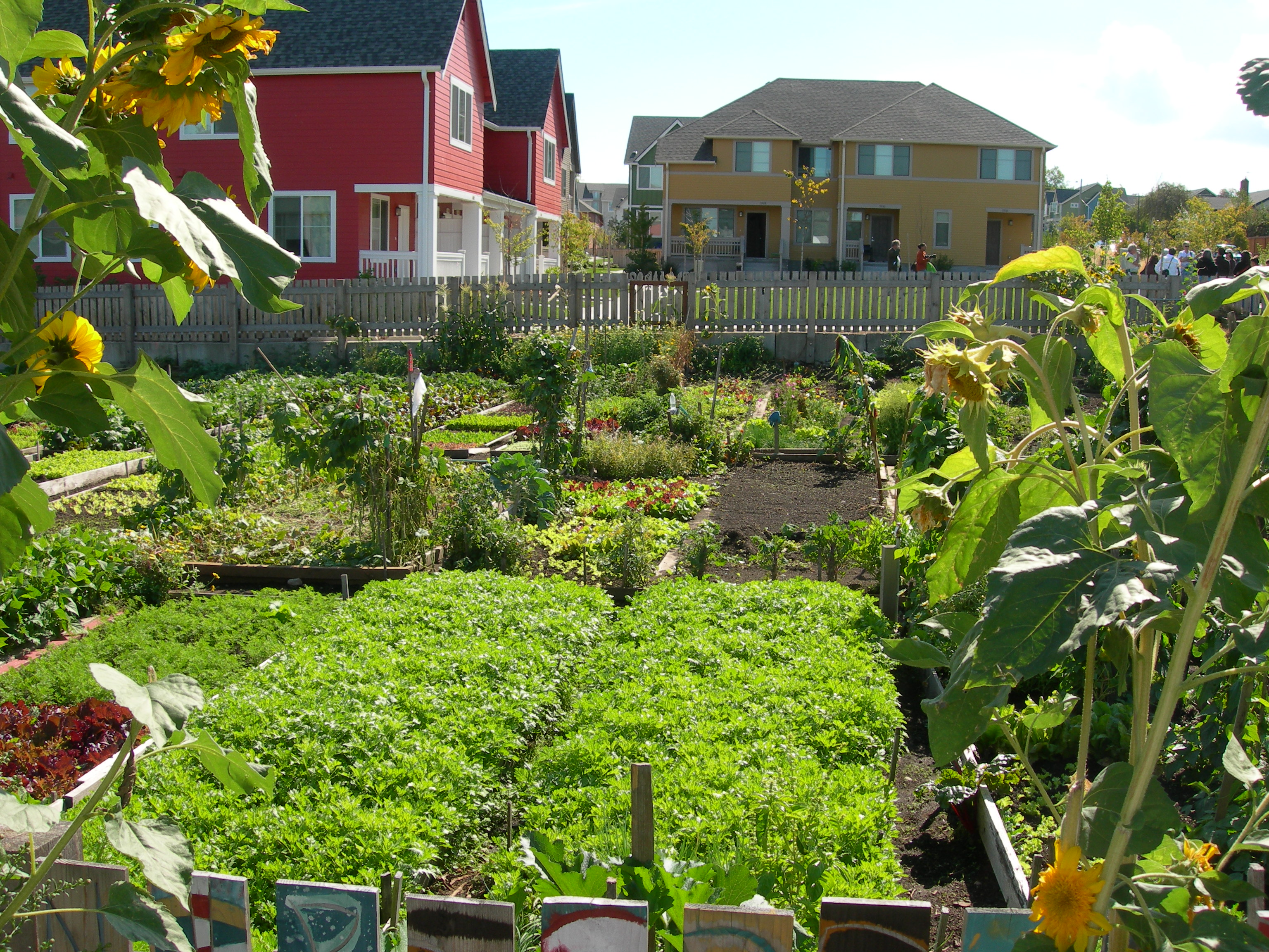 High_Point_community_garden