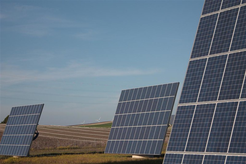 Pictured are solar panels in a field.