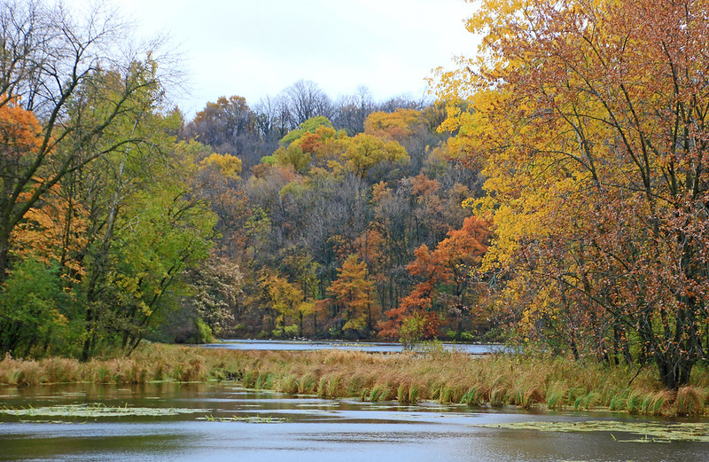 Image of lake in Pilot Knob State Park, Ellington, IA.