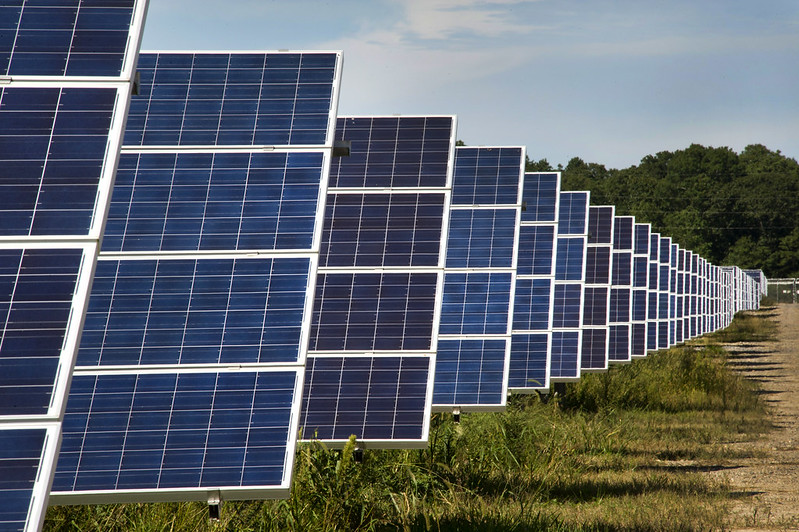 Image shows a row of solar panels in a field